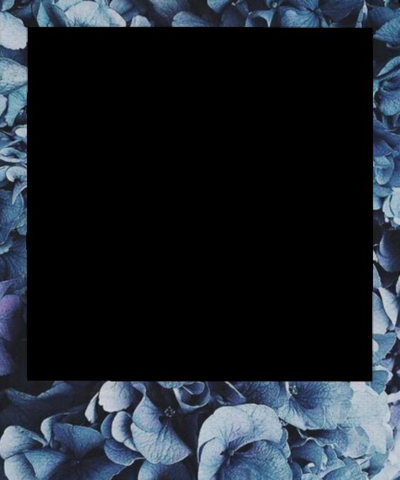 Polaroid aesthetic frame flower sticker...