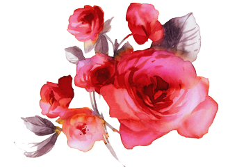 freetoedit flowers roses nature ftestickers