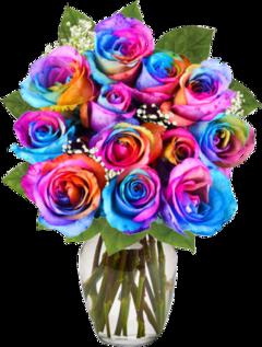 colorfulrosesline freetoedit