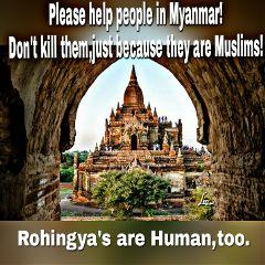 help myanmar!don't kill muslims! rohingya's