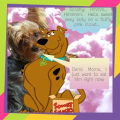 freetoedit dog yorkie