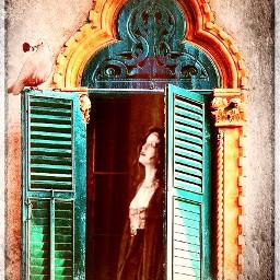 freetoeditlove dove window lostlove freetoedit