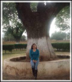 people photography treelove tree