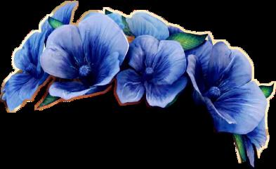 flowercrown use freetoedit