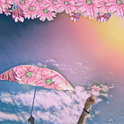 umbrellaremix freetoedit umbrella sky