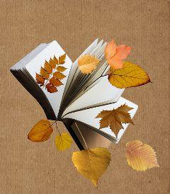 paperart book foliage autumn autumnleaves