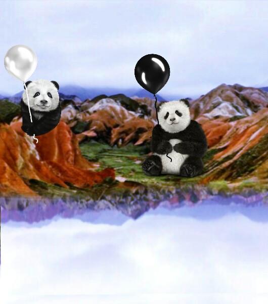 #vipshoutout #pandas
