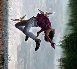 freetoedit falling dailyremix birds fly
