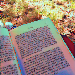 book booklover photogtaphy picnic