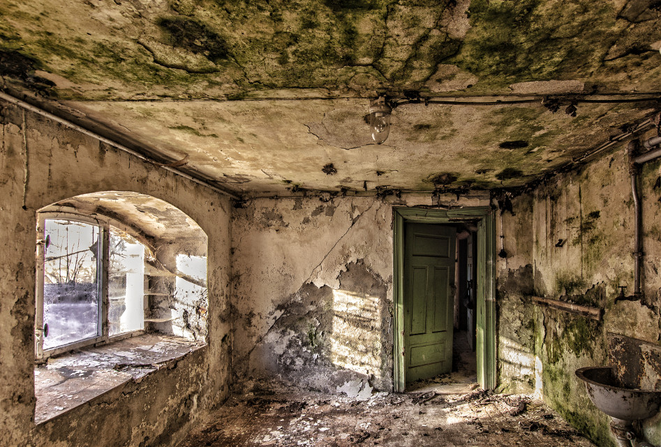 #dpcsunshine   #urbex #lostplace #lostplaces #vergessener #verlassener #Ort #Ruine #lost #places #urban #exploring #rotten #abandoned #place #oldphoto #photography #retro #vintage #leaving #emotions #urbandecay #destroyed #UrbanExploration #Stadterkundung #destroy #UrbanExploring #UrbanExplorer #silence #stille #ruhe #building #nostalgic #nostalgie #history #Historie #empty #leer #vergessen #abandonedbuilding #abandonedplaces #leerstehend#NoPeople #Foto #UrbexerAP #LP #art