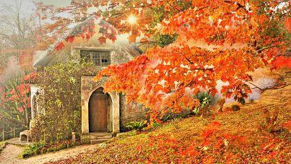freetoedit autumn cottage leaves beautiful