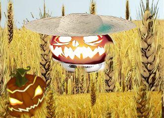 decorationremix freetoedit pumpkinpatch