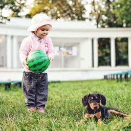 people photography girl dog