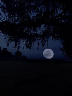 freetoedit nightsky moon remixit