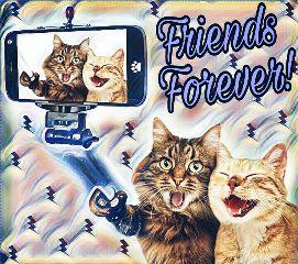 freetoedit friendsforever