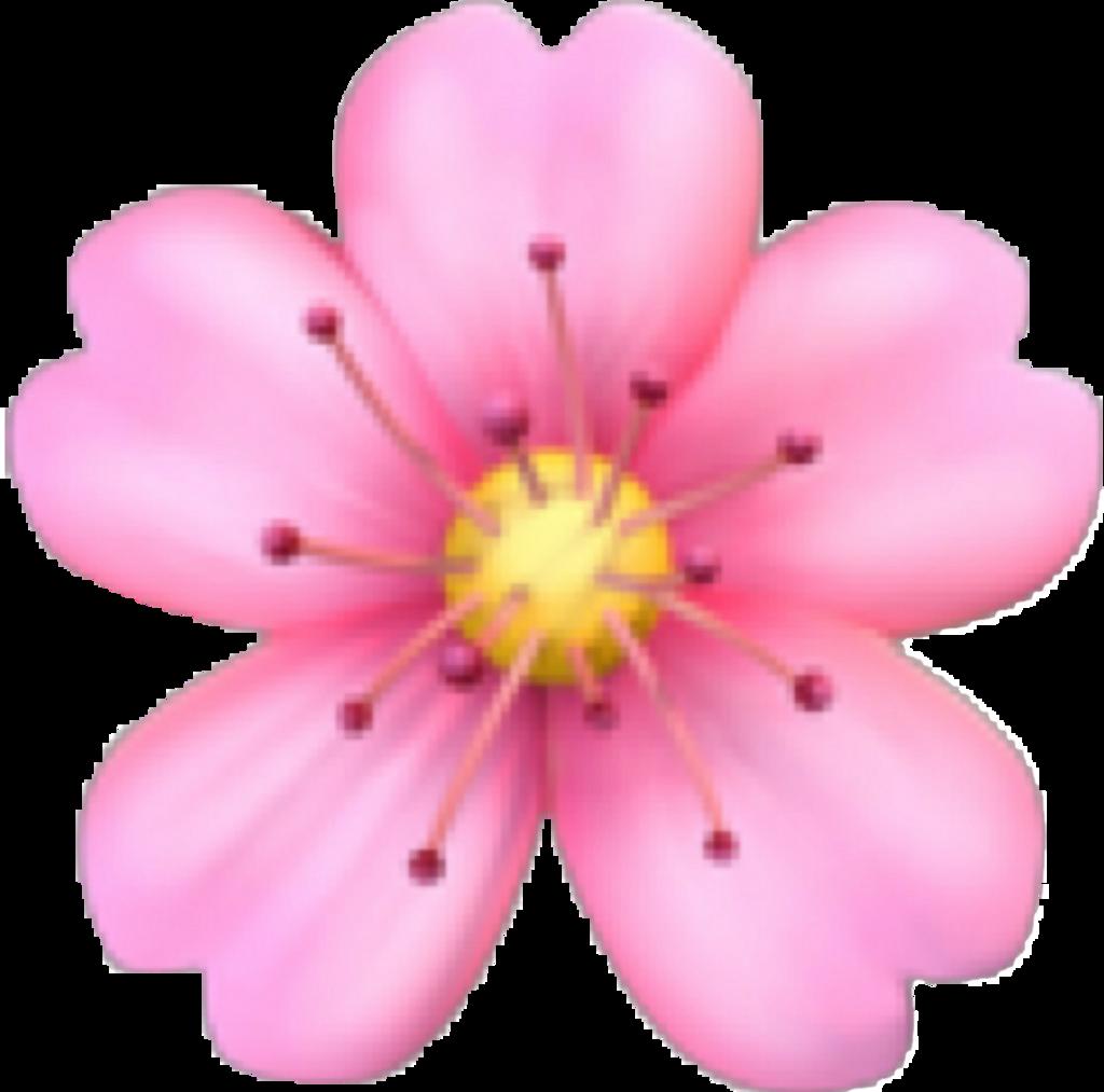 Emoji Pink Flower Emojiflowerremixit Cute Colorful Love