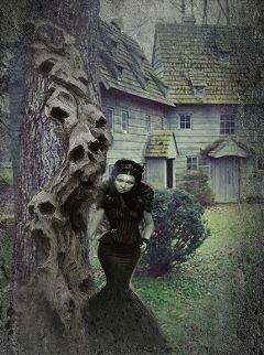 freetoedit myedit edgy hauntedhouse halloween
