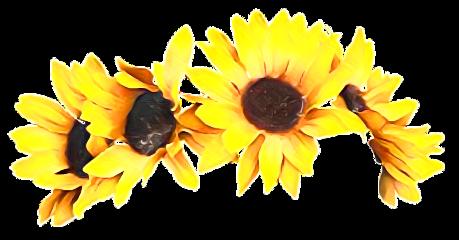 autumn fall headband sun sunflower freetoedit