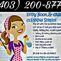 cleaningservice cleaning professional sparkle freetime