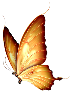ftestickers gold butterfly freetoedit
