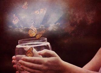 freetoedit edit butterflies jar hands
