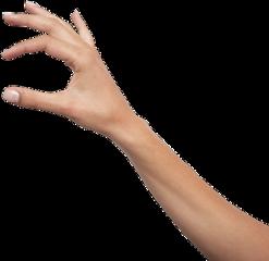 ftestickers handstickers arm hand freetoedit