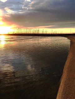 freetoedit earlymorning atthebeach sunrise