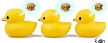 freetoedit bandaidgirl77 ducks burgers