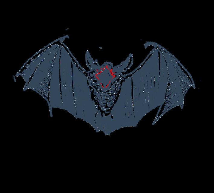 #bat #halloween#freetoedit