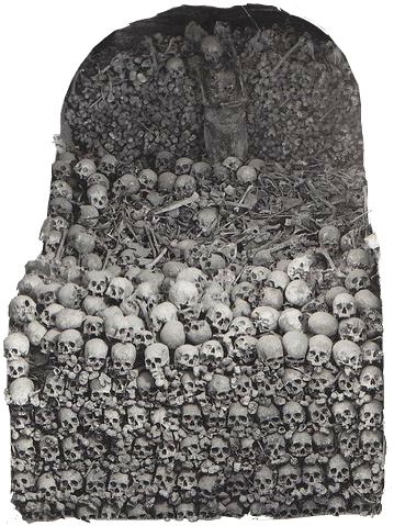 #picsart #sticker #skulls #skull #bones #bone #catacombs #catacomb #dead #death #darkart #horror #scary