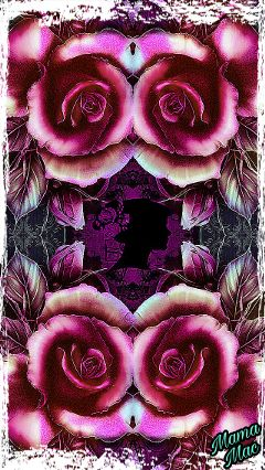 freetoedit mirroreffect rose