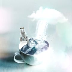 freetoedit caffe bear clouds waterfall