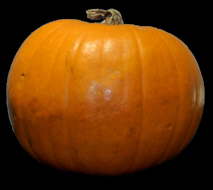 #pumpkin #vegetable #freetoedit
