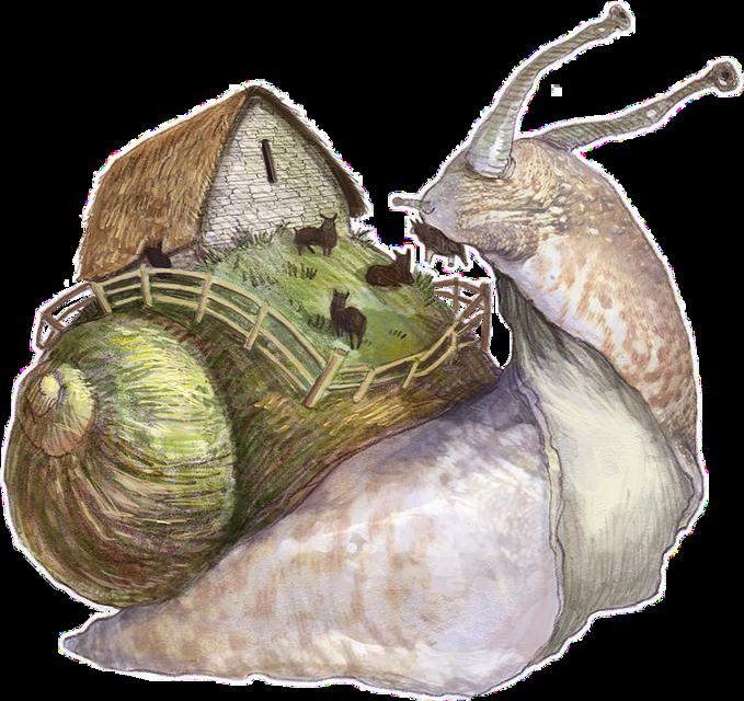 #ftestickers #snail #freetoedit