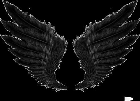 #alas #angel #black #negras #plumas #decoracion #decoration #demonio