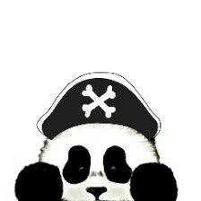 freetoedit pirate panda