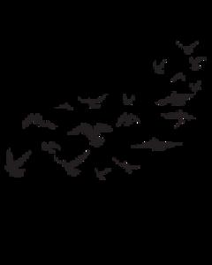 birds black tattoo freetoedit