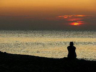 freetoedit solitude