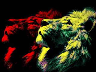 lion colorbright popart olga freetoedit