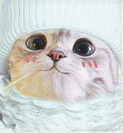 dailysticker cute cat portrait sweater freetoedit