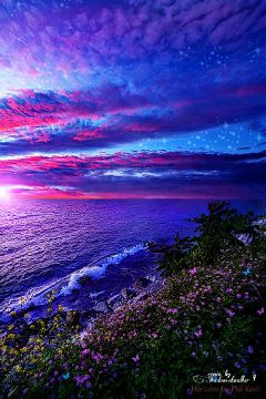 freetoedit remixed colorful nature summer
