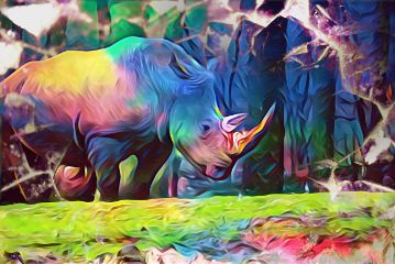like4more follow4more hdr2 colorful rhinoday freetoedit