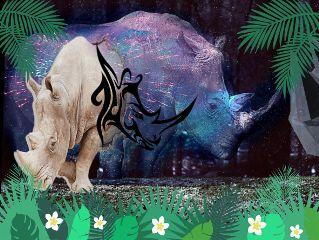 freetoedit rhinoday rhinoceros jungle rhinoedit