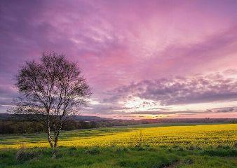 freetoedit landscape heaven nature