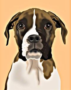 freetoedit dogsofpicsart