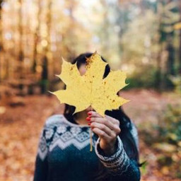 autumnart freetoedit
