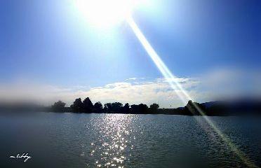 waptiltshifteffect thelake sunbeams sun nature
