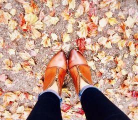 lovingautumn fall iloveit leaves cellphonephotography