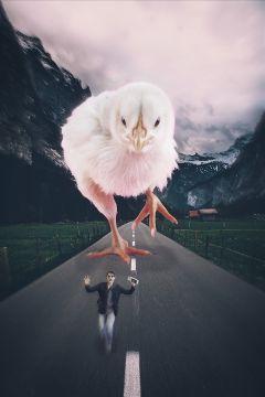 freetoedit remixit man running chick ftestickers