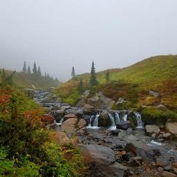 autumn fog washington hiking freetoedit